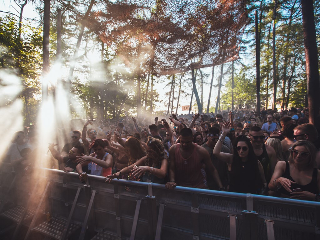 Forbidden Forest reveal acts for May 2020