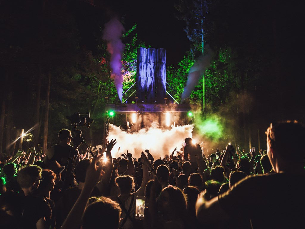 Forbidden Forest returns in September 2019