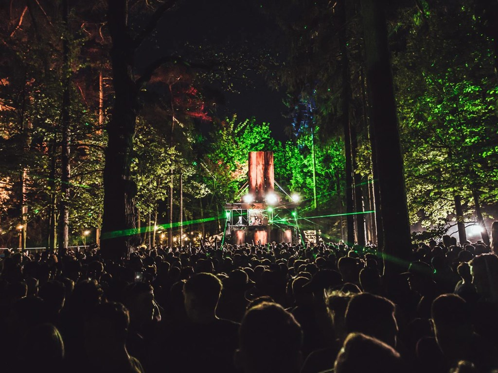 Forbidden Forest May 2020