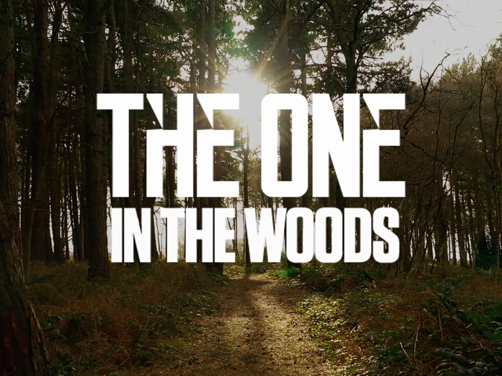 The One in the Woods 2021