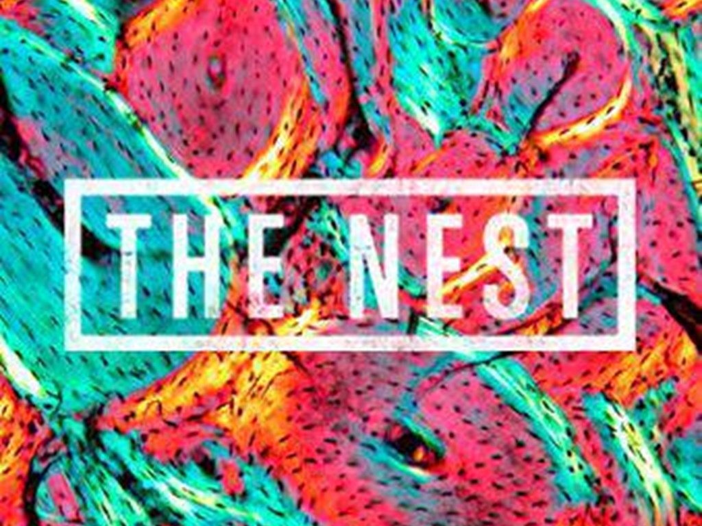 [Venue Spotlight] The Nest, London