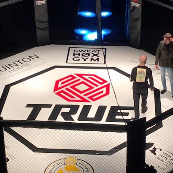 True Champion - The second Chapter